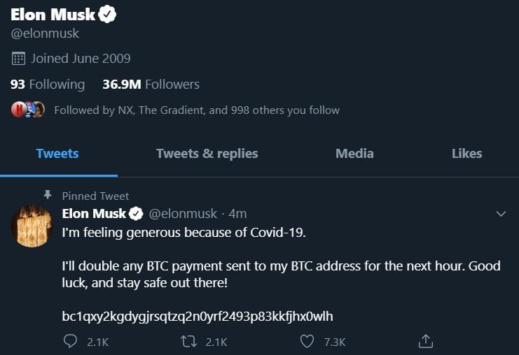 Elon musk twitter scam